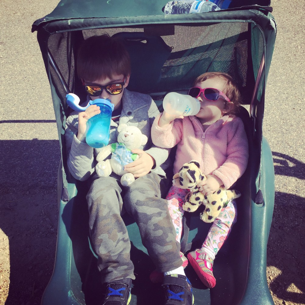 Always - spring for the double stroller.