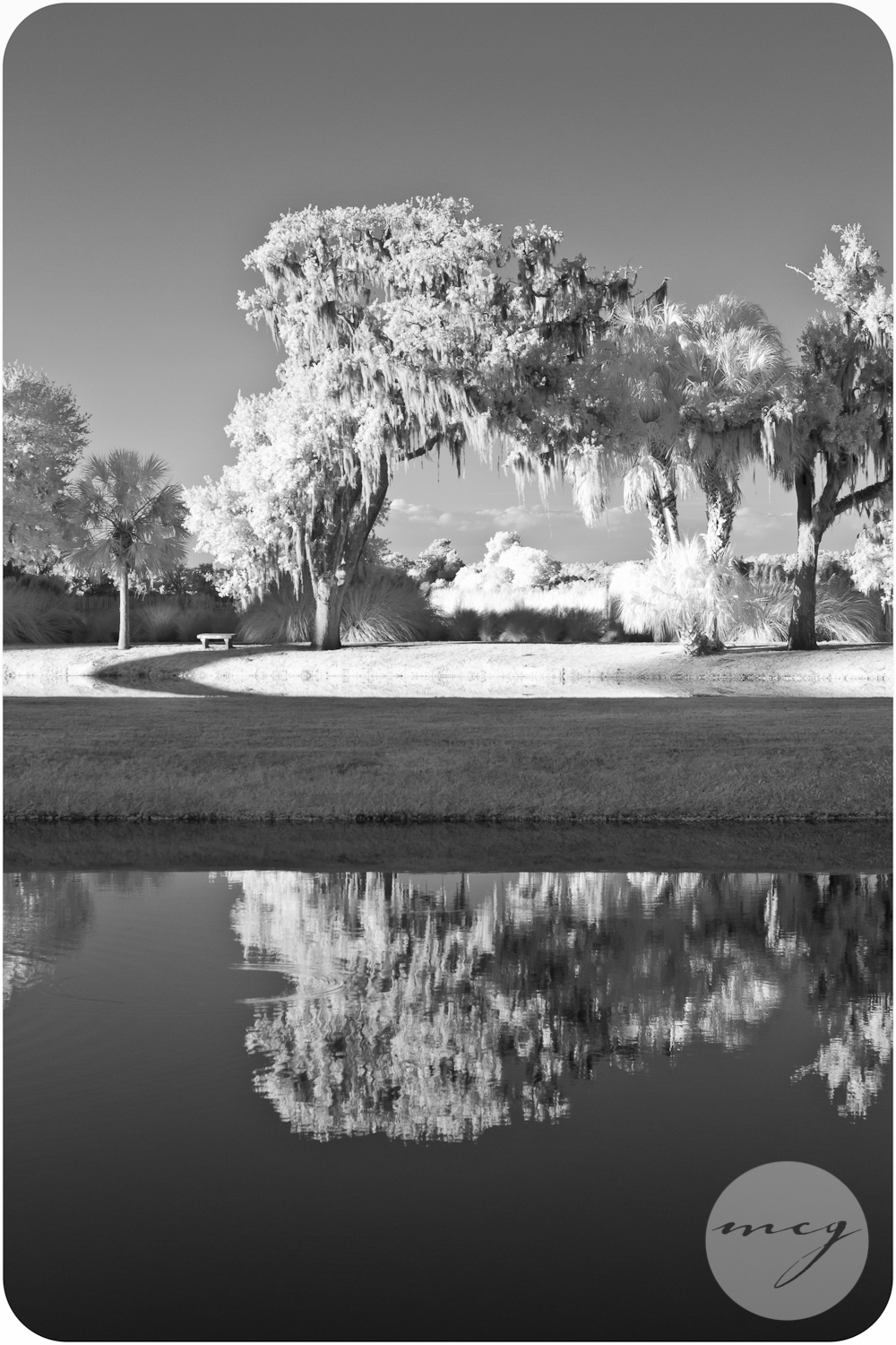 Middleton Place SC Event Photographer