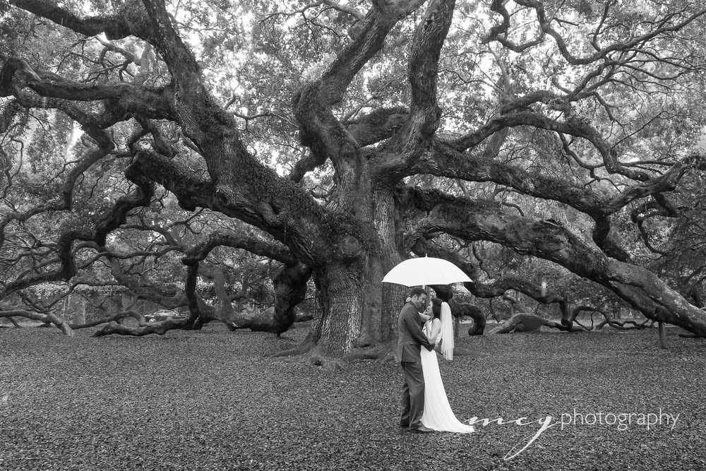 Angel Oak Private Ceremony