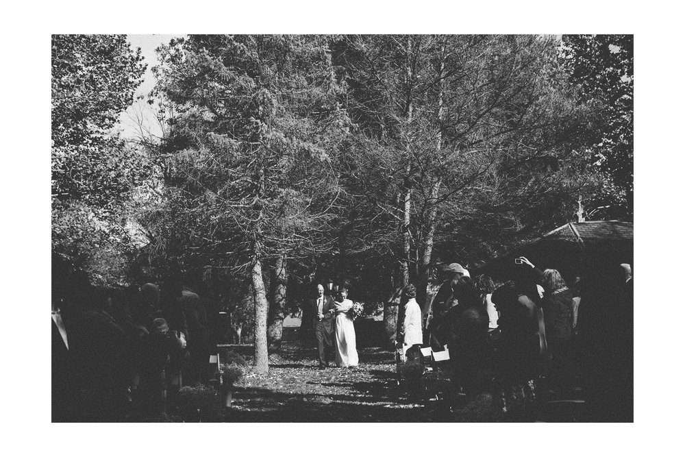 Hines Hill Campus Wedding Photos in Cuyahoga Valley National Park 28.jpg