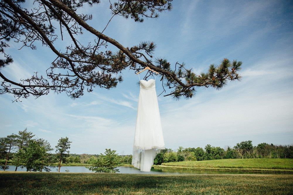 Cincinnati Wedding Photographer too much awesomeness 9.jpg