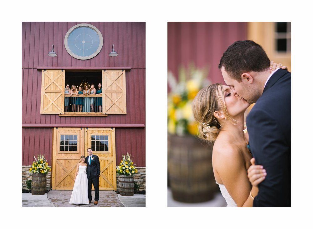Mapleside Farm Barn Wedding Photographer in Cleveland 53.jpg