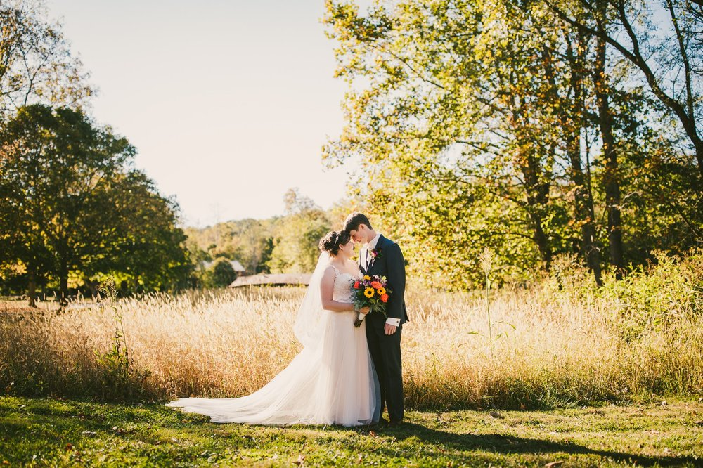 Hale Farm and Village Wedding Photographer 00001 .JPG