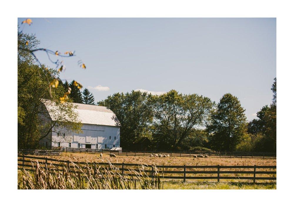 Hale Farm and Village Wedding Photographer 00006 .JPG