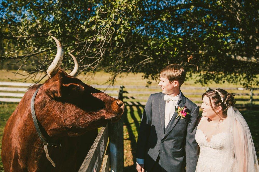 Hale Farm and Village Wedding Photographer 00031 .JPG