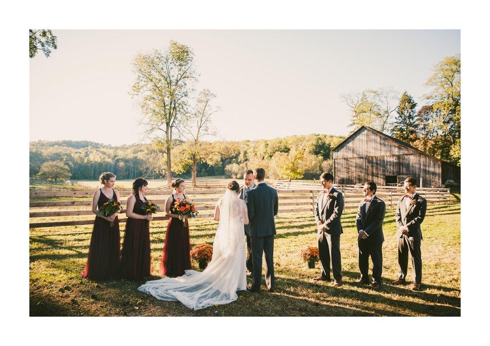 Hale Farm and Village Wedding Photographer 00061 .JPG