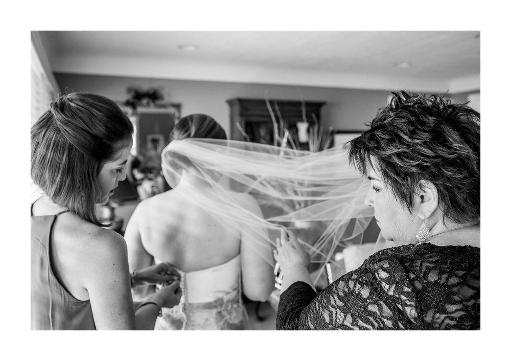 Bay Village Backyard Tented Wedding Photographer 7.jpg