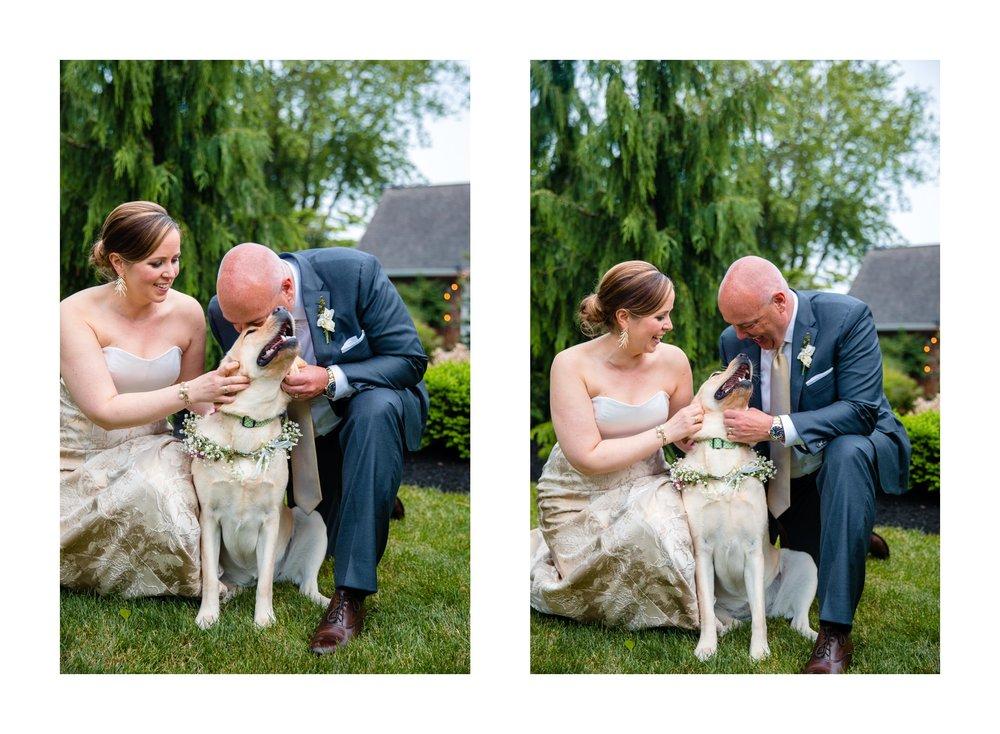 Bay Village Backyard Tented Wedding Photographer 56.jpg