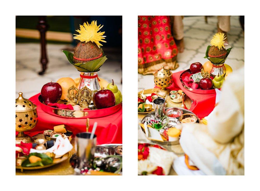 Succop Nature Park Conservancy Indian Wedding Photographer in Butler Pennsylvania 78.jpg