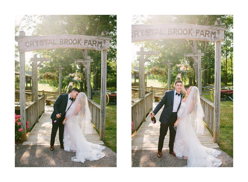 Crystal Brook Farms Wedding Photographer 1 47.jpg