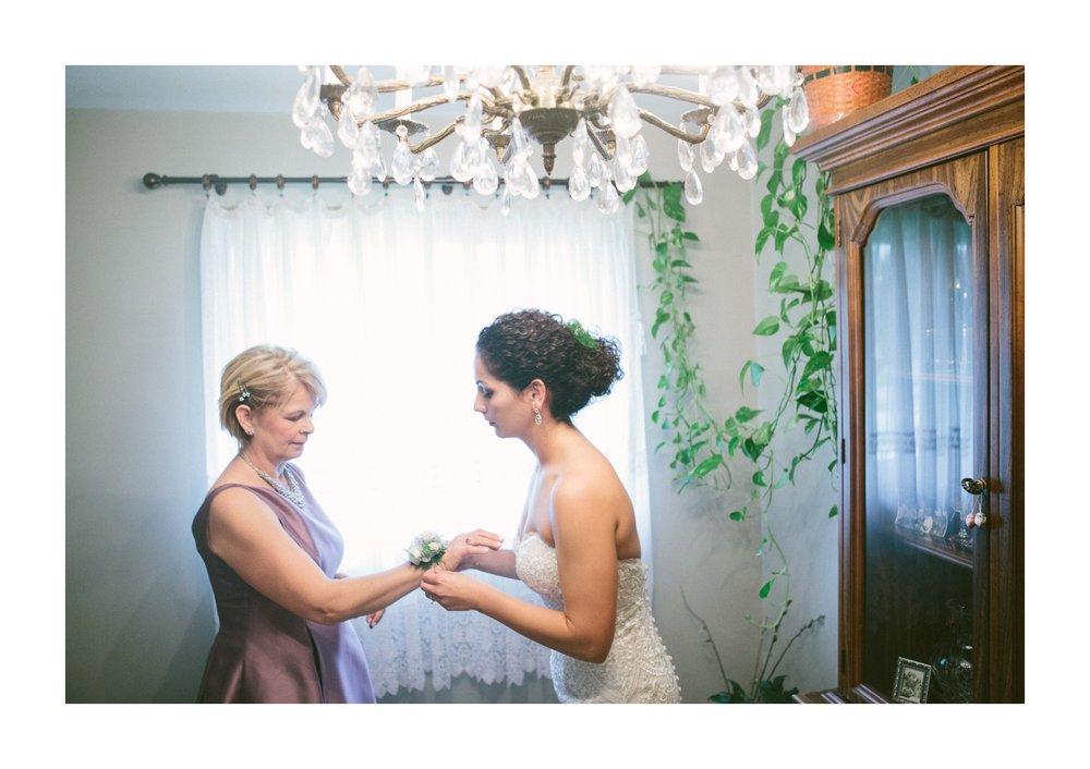 St Sava Hall Wedding Photos in Cleveland 1 14.jpg