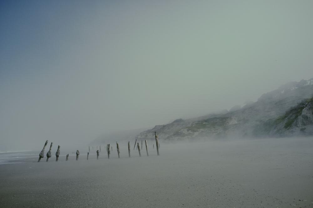 Funston Fog.