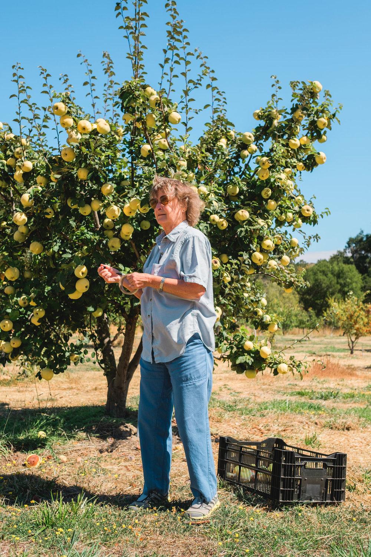 Orchards_Lucas_Saugen_Filoli-9671.jpg