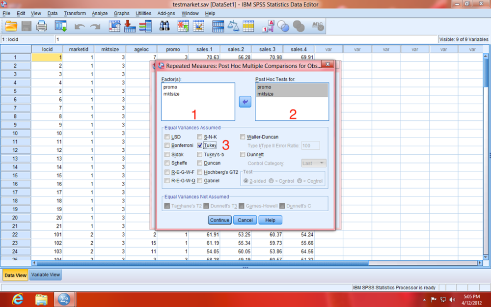 SPSS Repeated Measures Post Hoc Model Dialogue Window