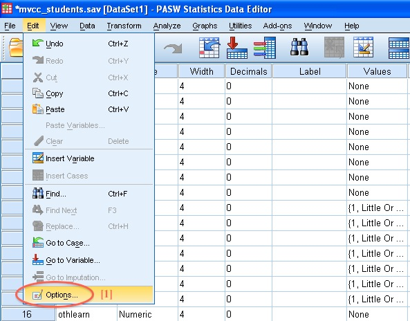 SPSS Options Menu Example