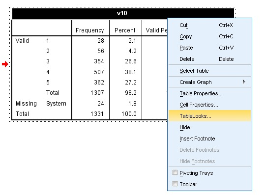 SPSS TableLooks Screen Example 1