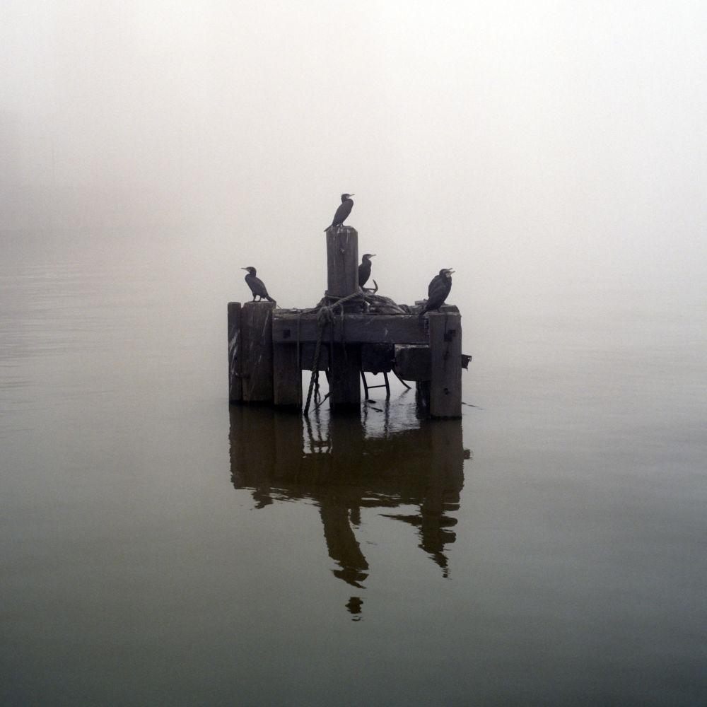 Riverside Enigmas