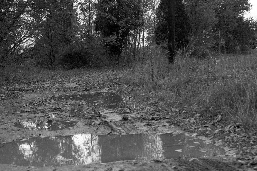 Muddy-way.jpg