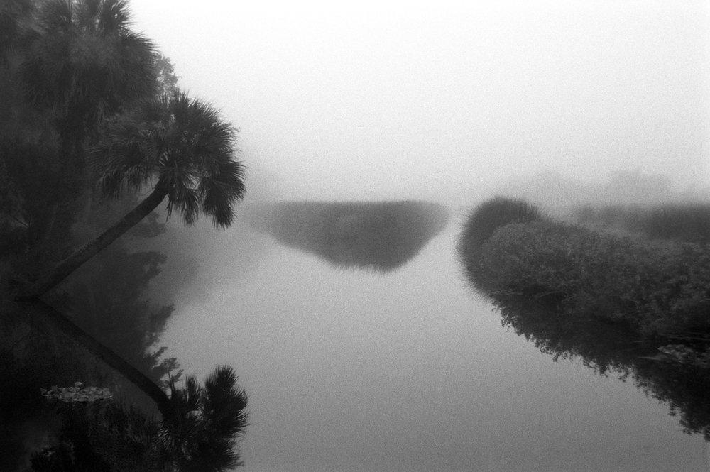 Marshy-fog6_BW.jpg