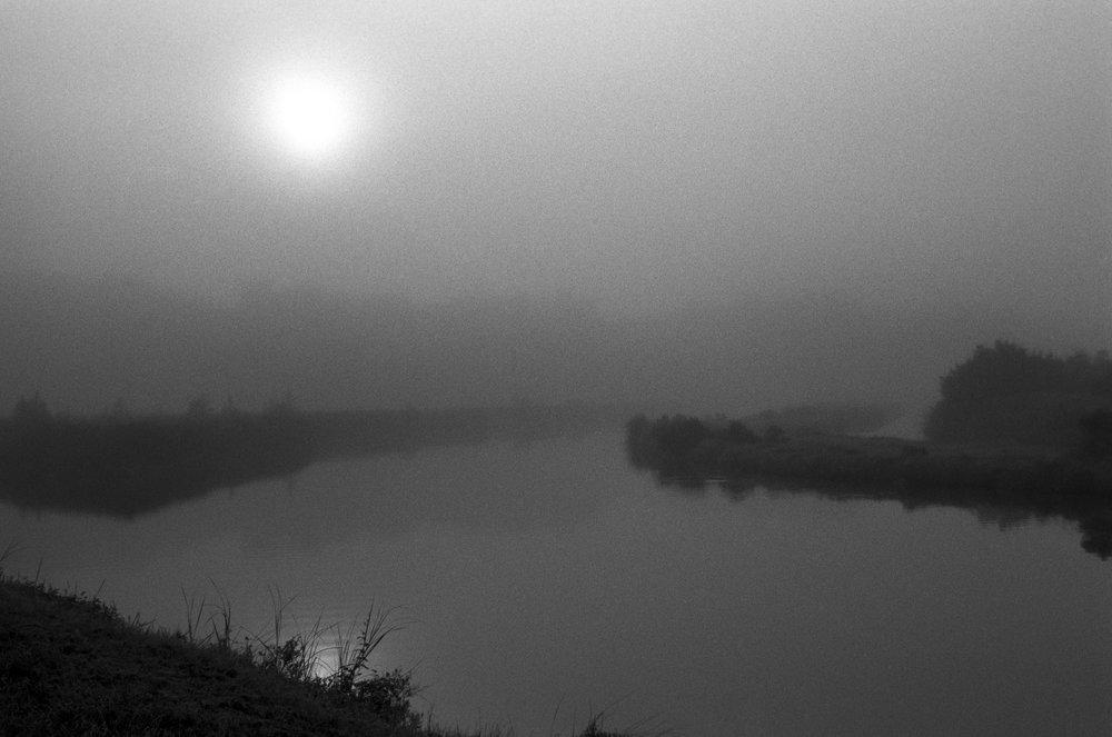 Marshy-fog20_BW.jpg