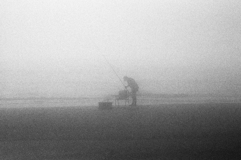 Marshy-fog26_BW.jpg