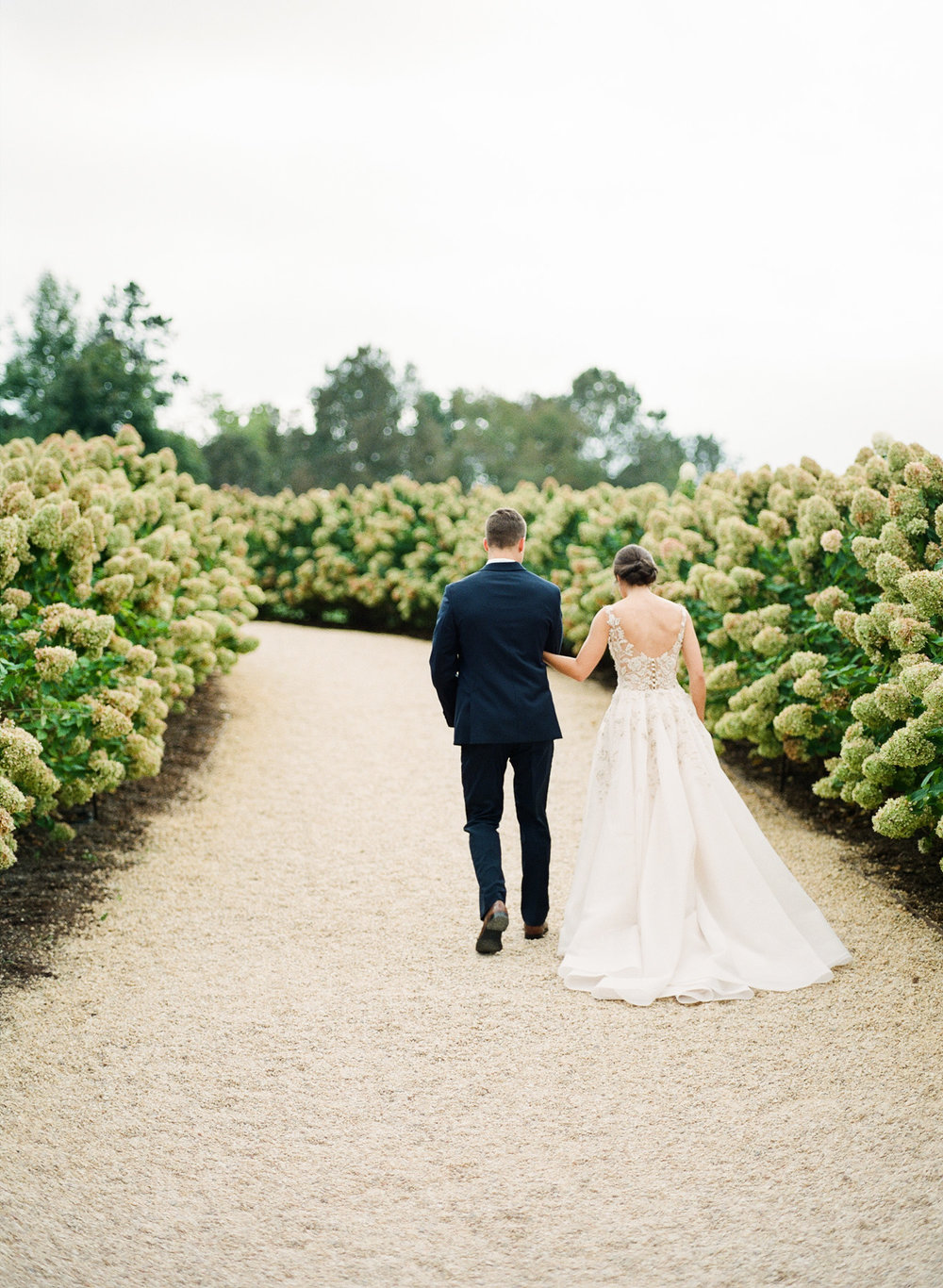 Pippin-Hill-Farm-and-Vinyards-Wedding-Film-Photography-56.jpg