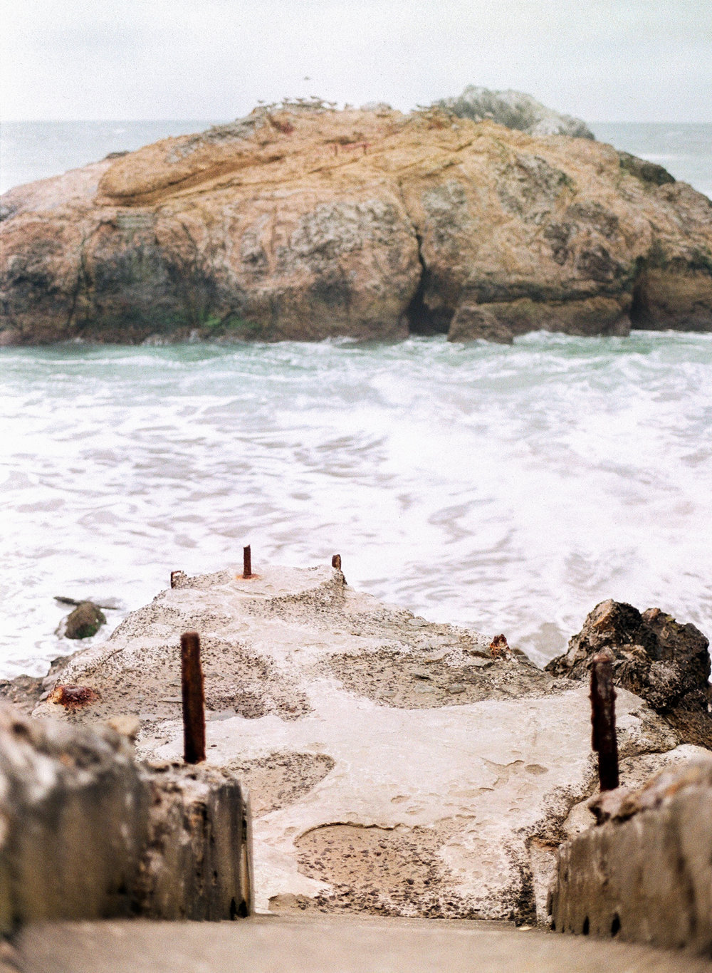 San-Francisco-Wedding-Film-Photography-28.jpg