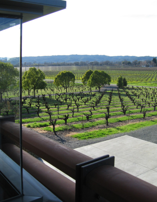 stryker sonoma vineyard
