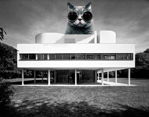 Le-Kittenusier'_architecture-500.jpg
