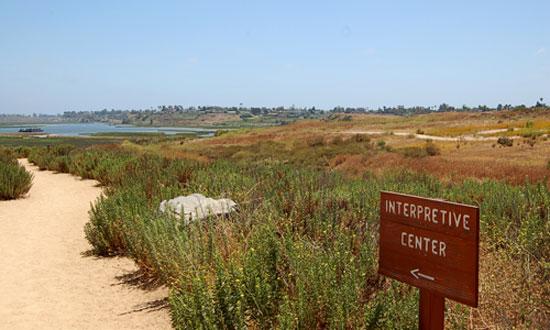 wetlands-greenfield-protection.jpg