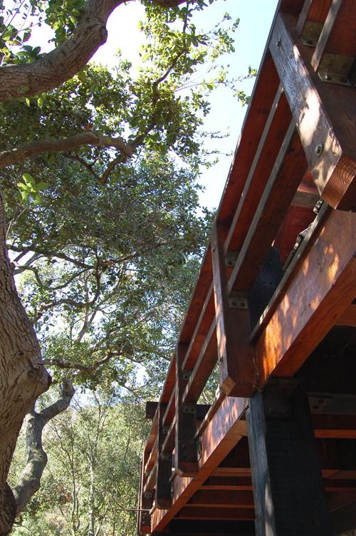 deck w oak canopy.JPG