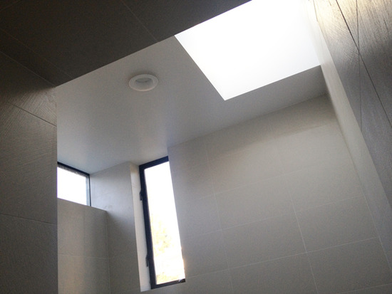 modern master bath with skylight and clerestory windows