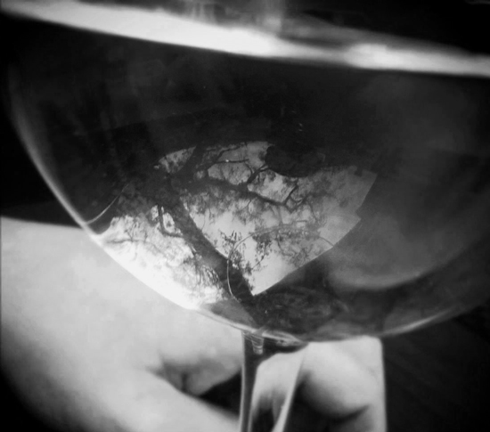 reflection-wine-glass_550x485.jpg
