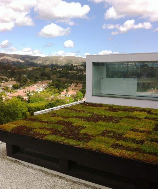 green-roof-residential-OC-550px.jpg