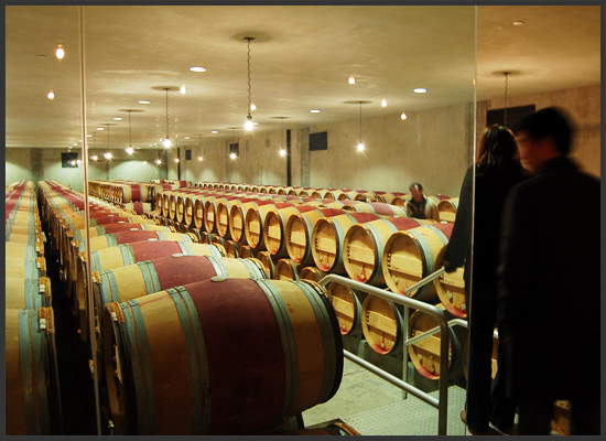 MYD-studio-dominus-winery-barrels-550x400.jpg