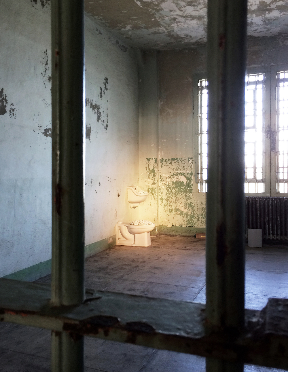 blossom // hospital chambers