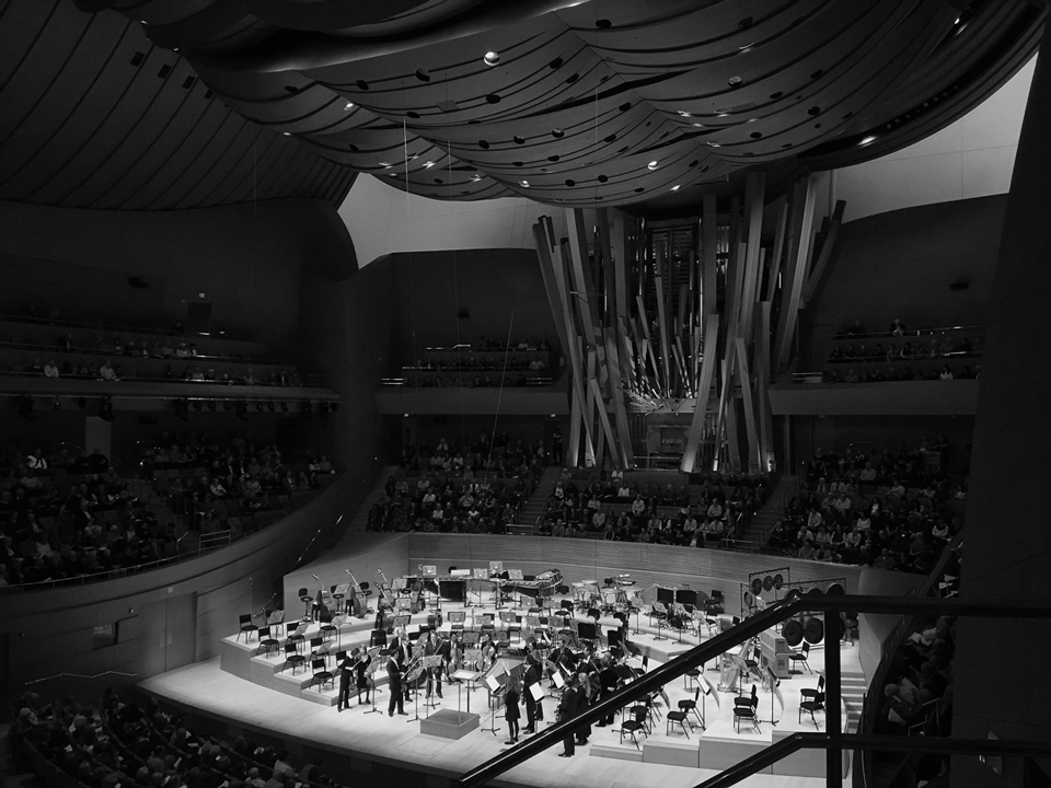 inside the walt disney concert hall