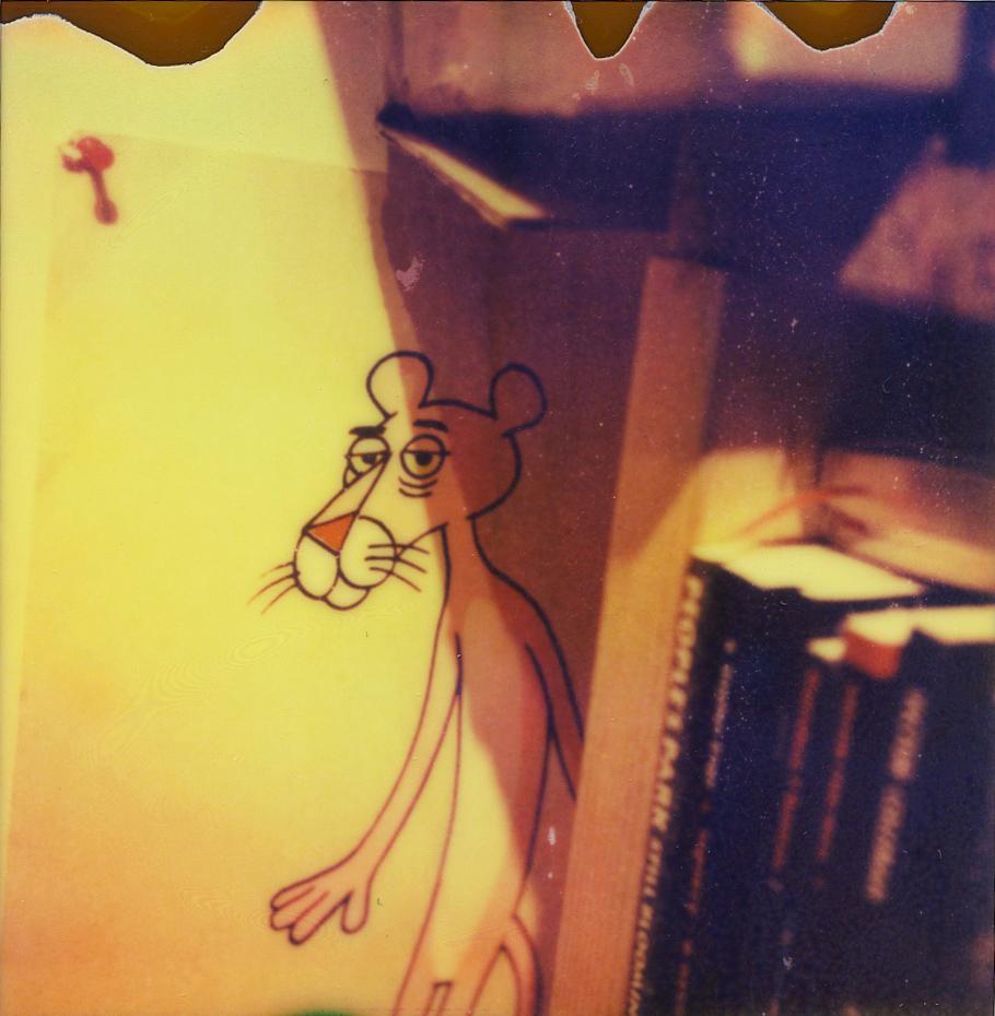 panther2_o.jpg