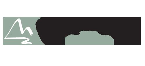logo-wv-central.png