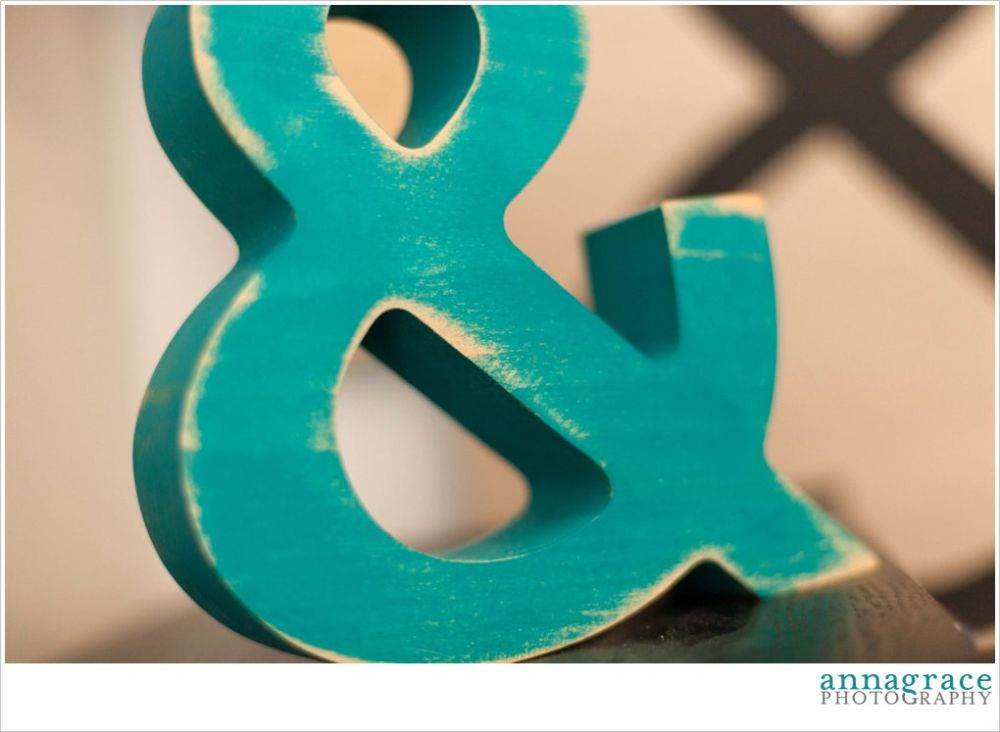 I can promise you that I will be using this ampersand in my engagement pictures whenever that time happens for me!