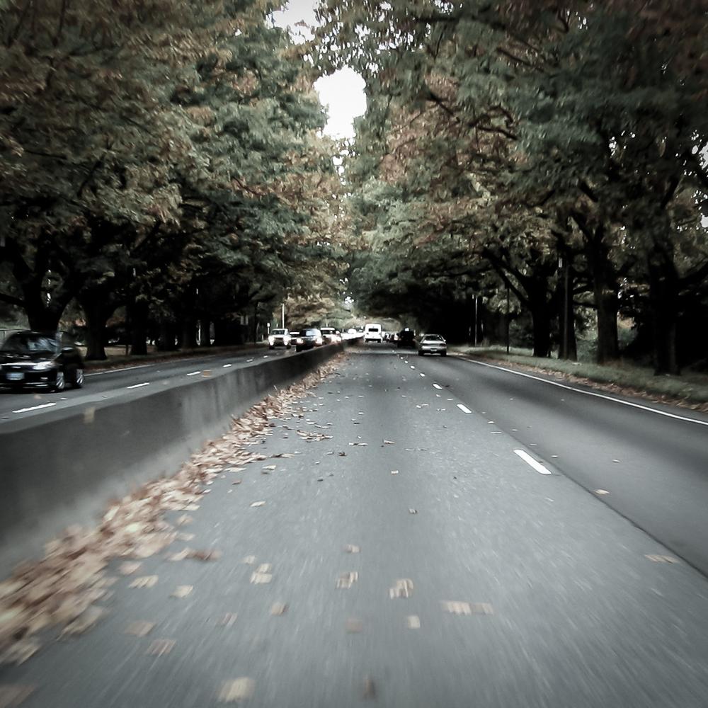 Pete Wright — Autumn.jpg