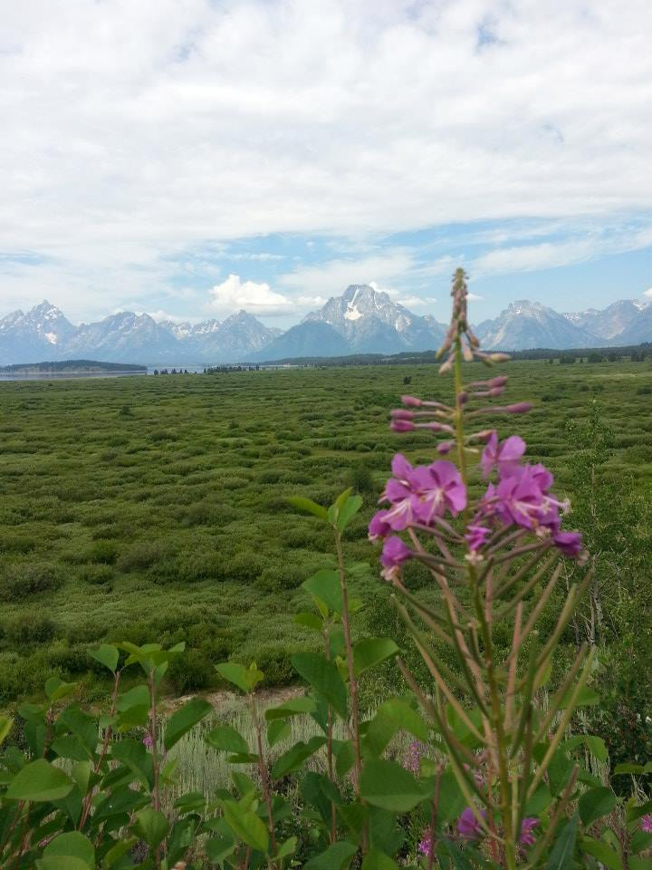 west-tetons.jpg