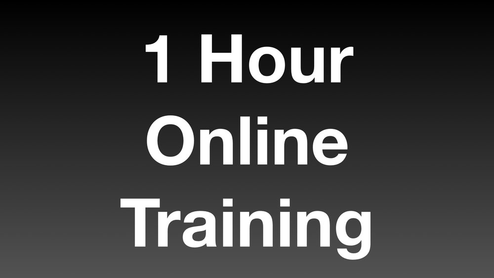 For an extra $50 you get an hour of online training.