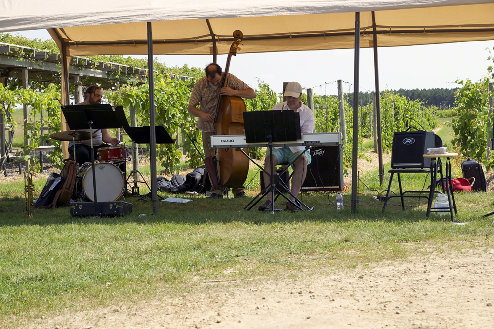 GALLERY] #RivertownDays at Alexis Bailly Vineyard — HastingsNow