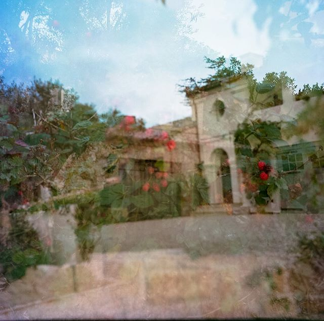 I'm finally sorta getting the hang — maybe — of my #zeiss Ikoflex Ic #tlr. And yet, my favorite image so far was an accidental #doubleexposure of a raspberry bush and this gorgeous home. Everything about this camera and analog photography, down to using an external light meter, has been a massive learning curve, but fun. I love a challenge. #kodakportra160 #film #120film