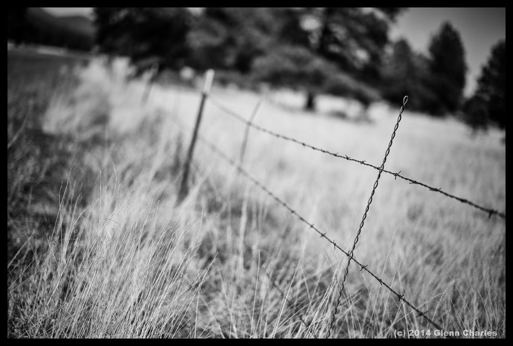 High desert outside of Flagstaff - Leica MM, 50Lux