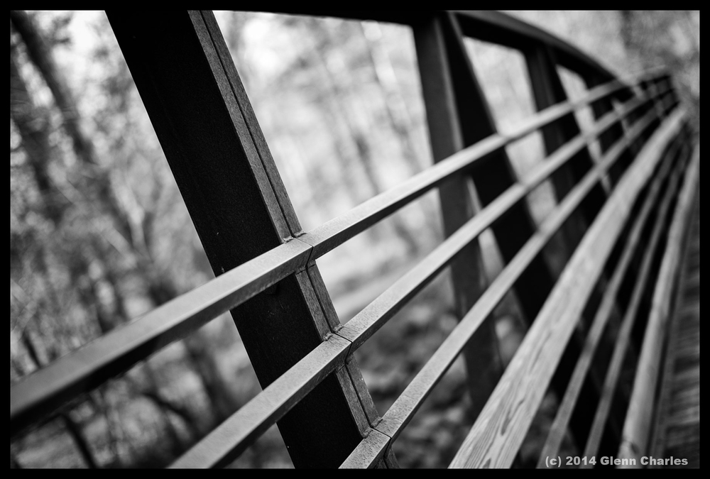 Creek bridge, Pisgah National Forest, Brevard NC -- Leica MM w/50 Lux
