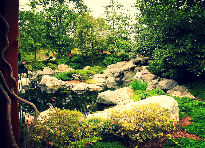 These rocks provide seating as well as a barrier to runoff water, keeping the koi pond safe.