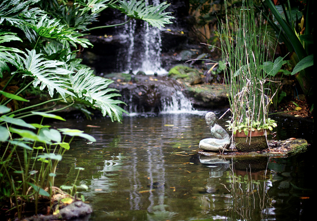 Koi pond waterfalls koi story for Build a koi pond yourself