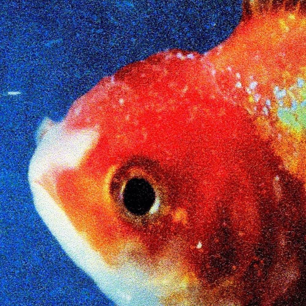 Big Fish Theory Vince Staples Kevin: Buy It Marcus: Try It Joe: Try It LINKS Official Site Facebook Twitter Instagram LISTEN ON Spotify Apple Music